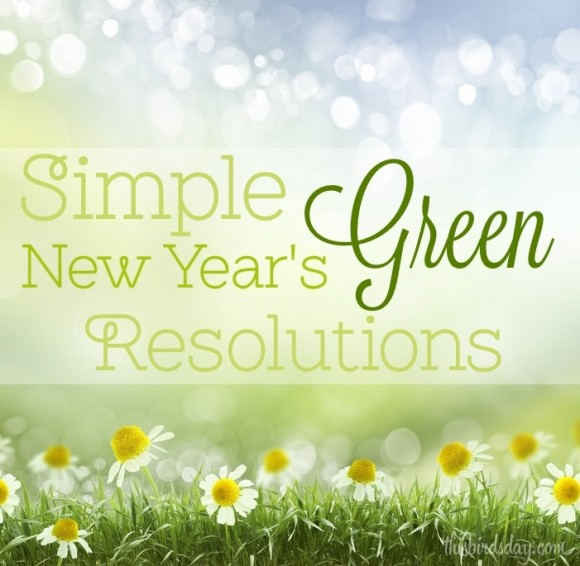 Simple Green New Years Resolutions.jpg