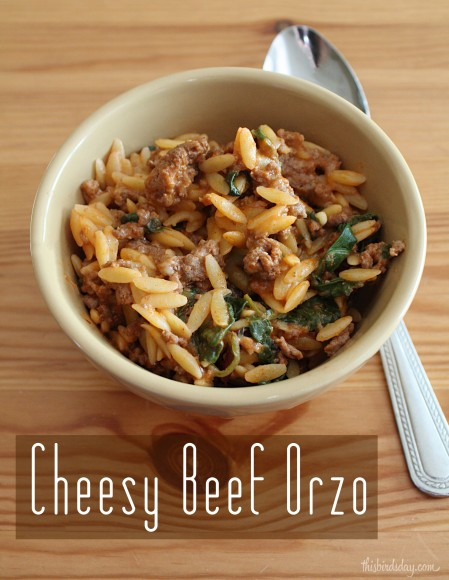 Delicious and easy cheesy beef orzo recipe post