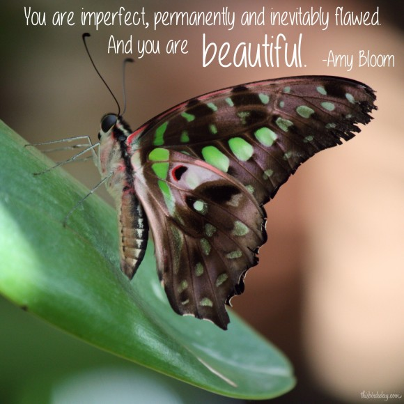 """You are imperfect, permanently and inevitably flawed. And you are beautiful."" Amy Bloom. Photo Copyrights: Sheri Landry"