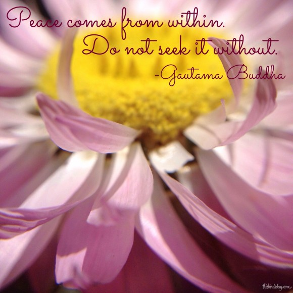 """Peace comes from within. Do not seek it without."" Gautama Buddha Photo Copyrights Sheri Landry"