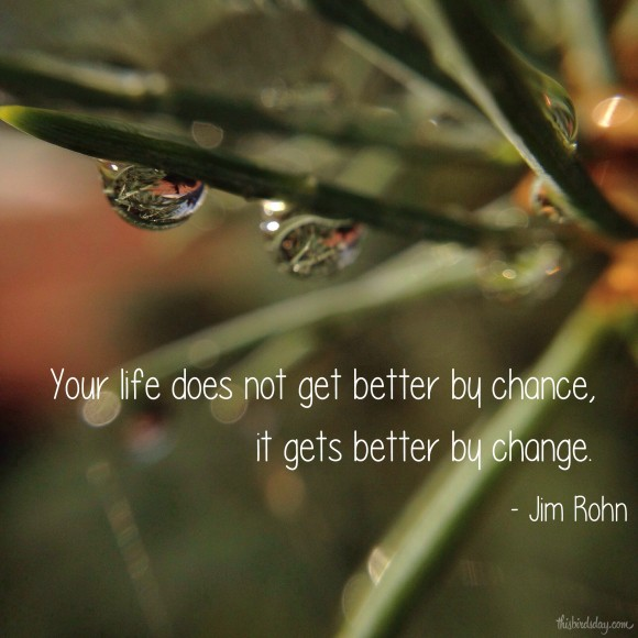 """Your life does not get better by chance, it gets better by change."" Jim Rohn Photo copyrights Sheri Landry"